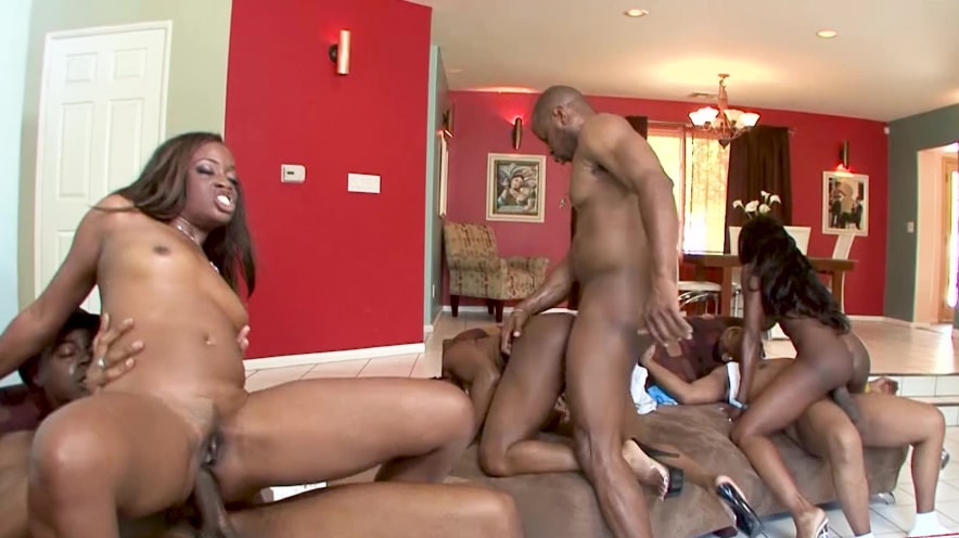 Jada Fire, Monique, And Diamond Jackson Black Ass Orgy